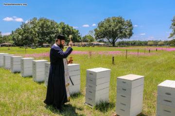 Праздник Изнесения Честных Древ Креста Господня и освящение монастырского меда